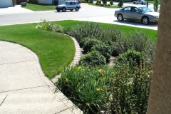 Curved-Front-Bed-Elevation-Change