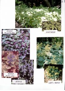 Perennials-2